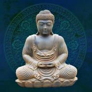 Koszulka męska (Budda)