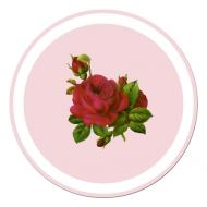 Kubek (Róża2)