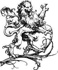 Koszulka męska (Lew6)