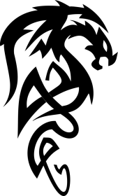 Bluza męska (Smok4)