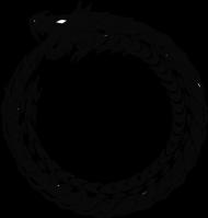 Bluza męska (Smok5)