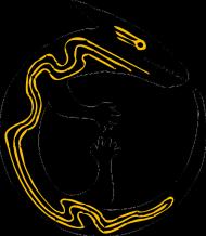 Koszulka męska bez rękawów (Jaszczurka)