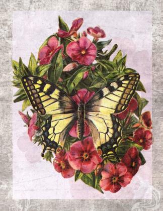 Torba bawełniana (Motyl)
