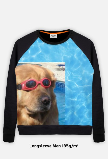 Dog doggo pies basenowy