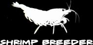 Przypinka Shrimp Breeder