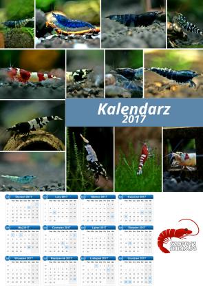 Kalendarz Krewetkowy 2017