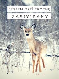 "Bluza ""Zasypany"""
