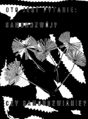 """Bluza """"Samorozwianie"""""""