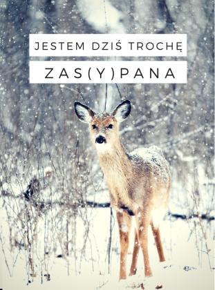 """Bluza """"Zasypana"""""""