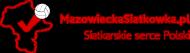 T-shirt dziecięcy Mazowiecka Siatkówka