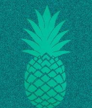 Pineapple - eko torba