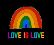 Love is love - koszulka damska LGBT