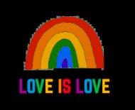 Love is love - bluza damska LGBT