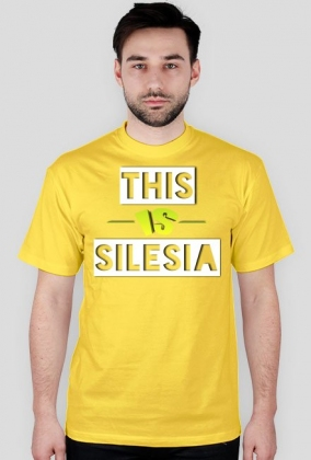 This Is Silesia