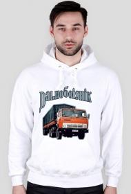 Dalnoboishik