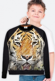 Bluza kids Tiger
