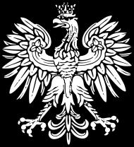 Koszulka patriotyczna Orzel w koronie