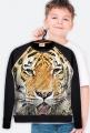 Bluza kids Tiger