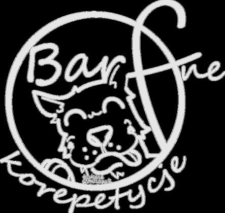 Koszulka prawdziwej  psiej barferki
