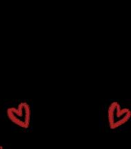 TSHIRT LOVERS