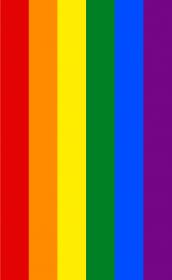 Tęcza LGBT koszulka męska (różne kolory)