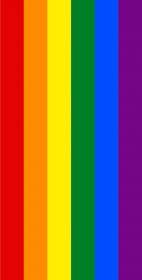 Tęcza LGBT iPhone 11 etui case
