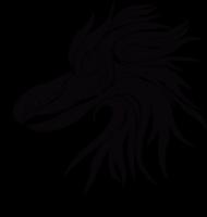 Orzeł - spirit animal