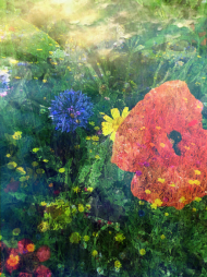 Kwiaty Torunia komin