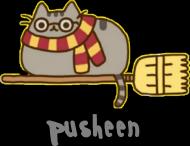 "Chłopięcy T-shirt ""Pusheen"" Wzór 7 Harry Potter"