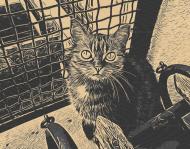 Comic Journey Cat Watching 2 Komin