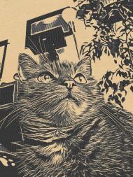 Comic Journey Cat Watching Komin