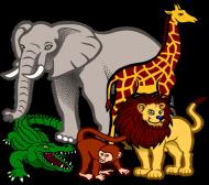 Śniadaniówka Zoo