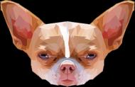 Chihuahua geometryczna  torba z Twoim Zwierzakiem