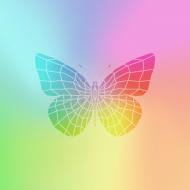 Maseczka motyl