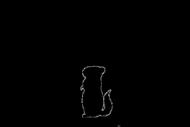 """Kubek termiczny """"Chinchilla world"""""""
