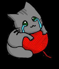 Bluza Chłopięca Kitku Płaczku