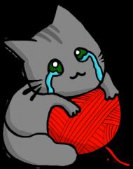 Bluza Kitku Płaczku