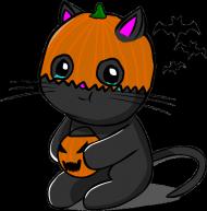 Koszulka Halloween Kitku
