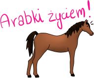 """Poduszka ,,Arabki Życiem"""""""