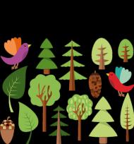 Grupowa koszulka dla rowerzysty ''przyroda i las'