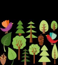 Grupowa koszulka basic '' przyroda i las''
