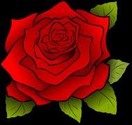bluza dla dziewczynki róża