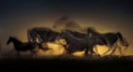 czarny kubek z pędzącymi końmi