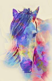 kubek głowa konia kolor
