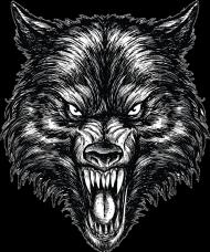 "Maseczka kolorowa ""Wolf"""