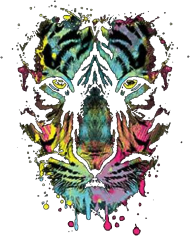 Bluza Damska Neon Tiger Wildlife Collection Streetshirt.pl