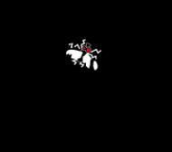 parszywe muszysko