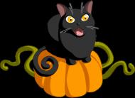 Czarny kot dynia maseczka lniana