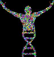Bluza Męska z Kapturem *DNA