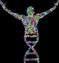 Body Niemowlęce *DNA